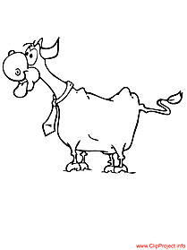 Bull colouring sheet for free