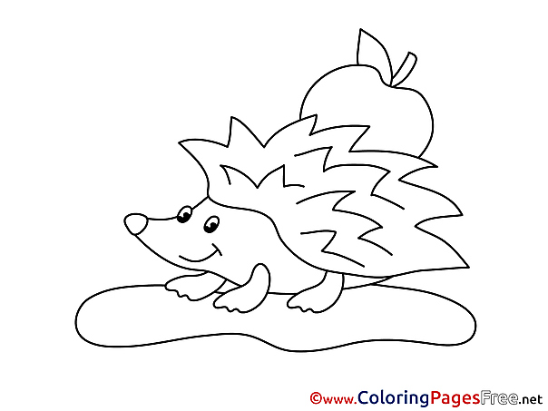 Apple Hedgehog Children download Colouring Page