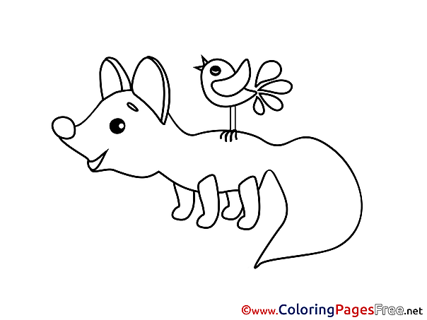 Bird Fox download Colouring Sheet free