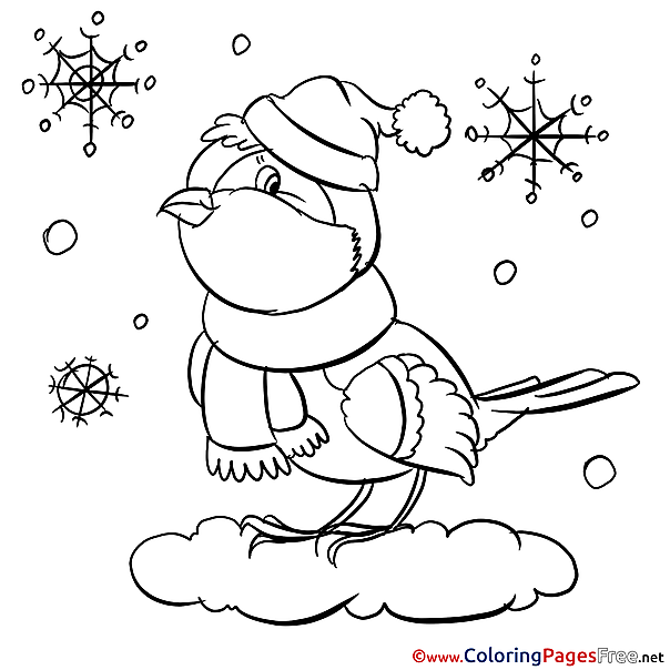 Bullfinch free printable Coloring Sheets