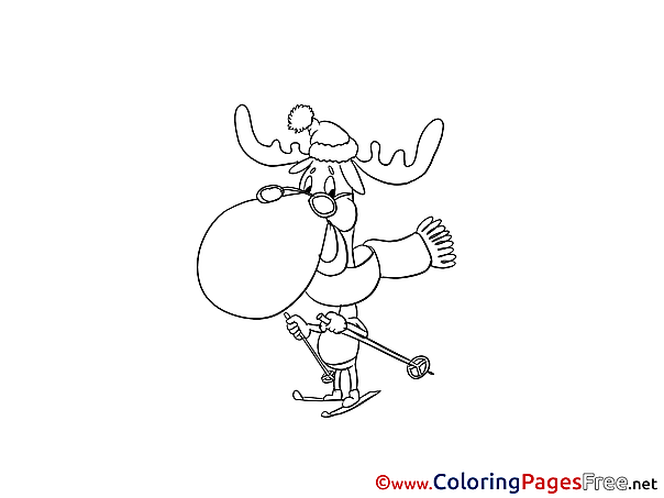 Deer Colouring Sheet download free