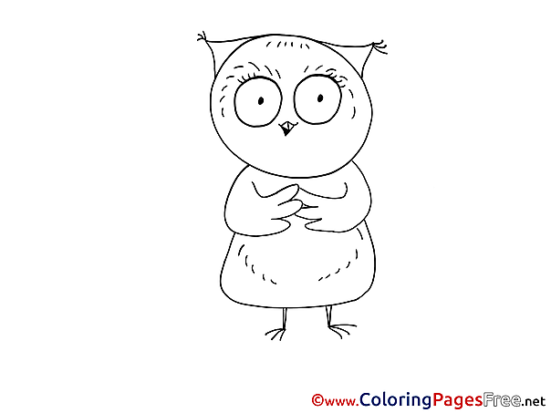 Owl for Kids printable Colouring Page