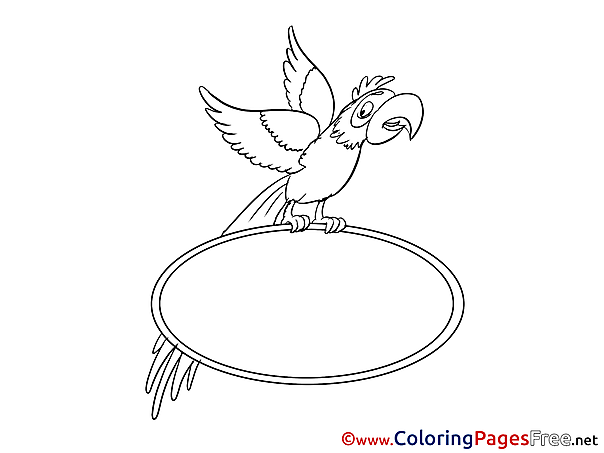 Parrot free Colouring Page download
