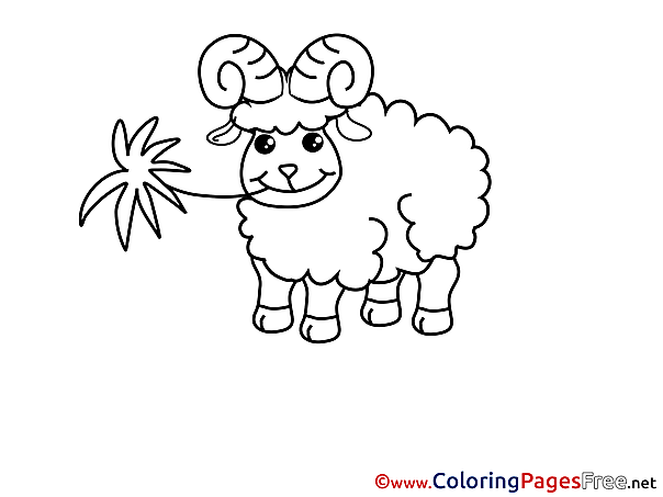 Sheep free printable Coloring Sheets