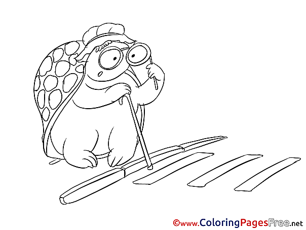 Turtle download printable Coloring Pages