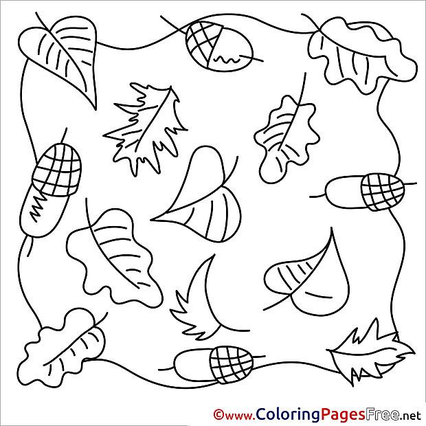 Acorns Autumn download Colouring Sheet free