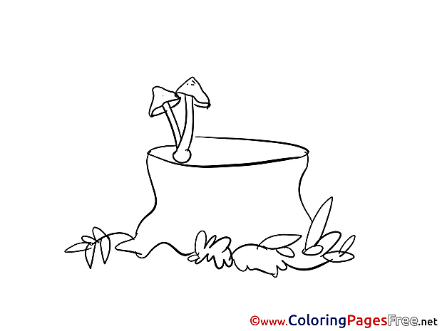 Stump Kids download Coloring Pages