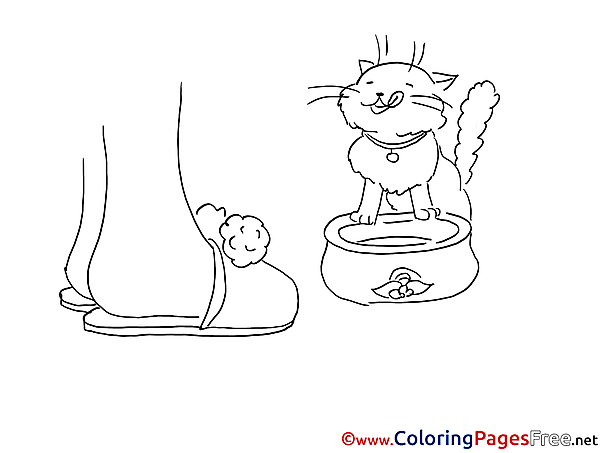 Coloring Pages for free Cat