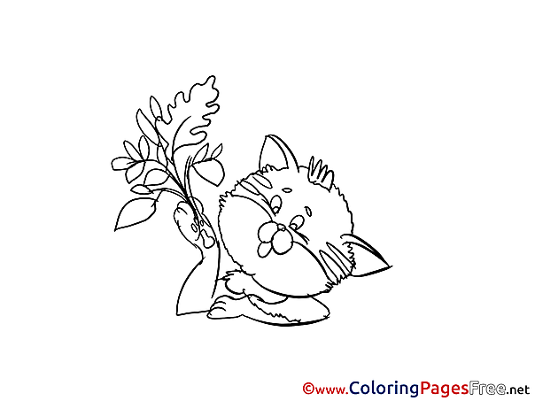 Flower Cat free Colouring Page download