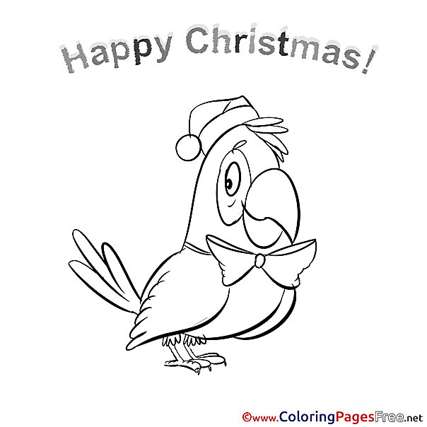 Parrot download Christmas Coloring Pages