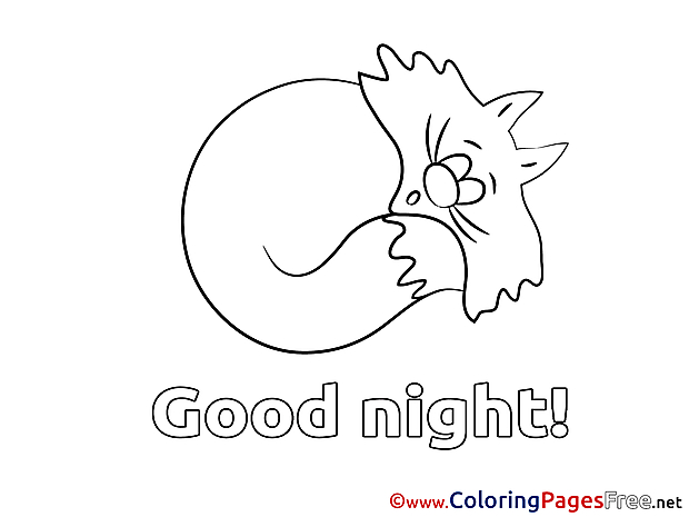 Cat Good Night Coloring Pages download