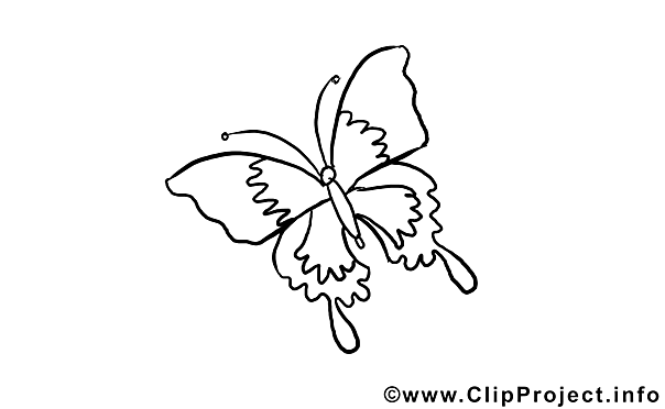 Butterfly download Colouring Sheet free
