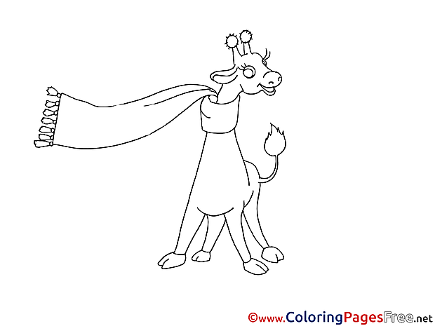 Giraffe with Scarf free Colouring Page download