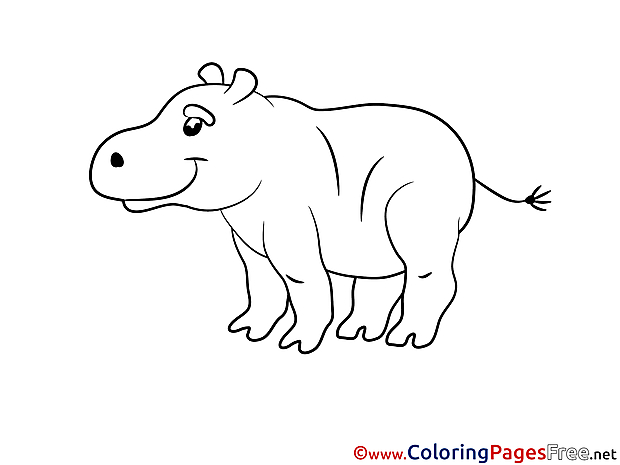 Hippo Colouring Sheet download free