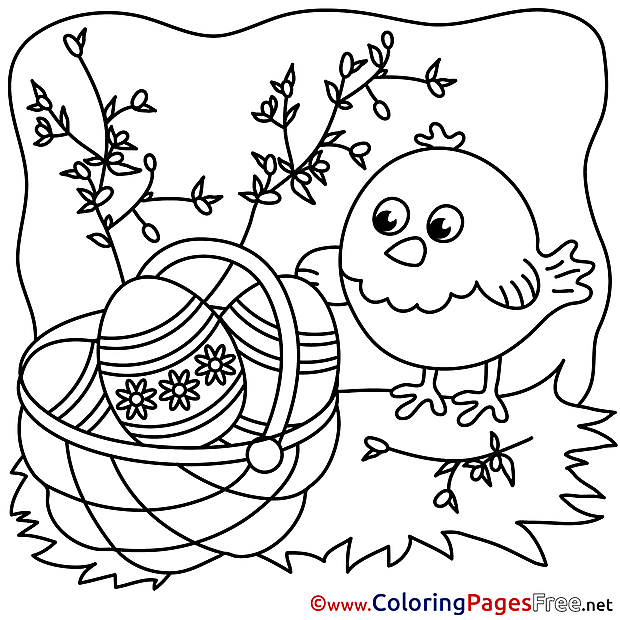 For Kids Easter Chicken Colouring Page