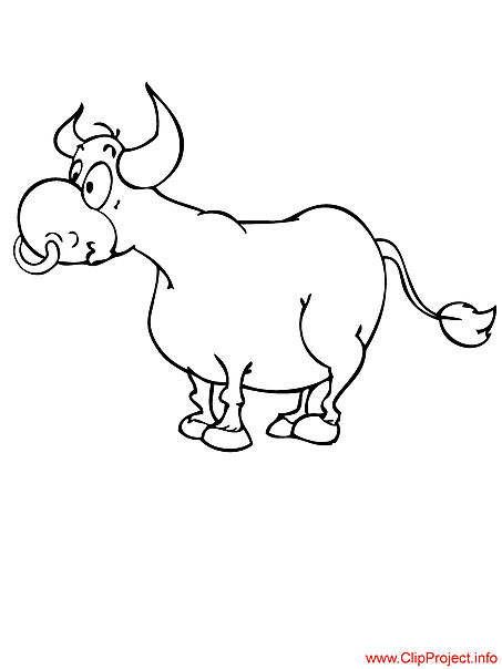 Bull coloring page for free