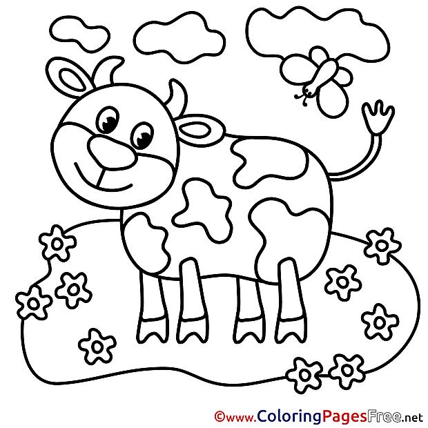 Calf Coloring Sheets download free