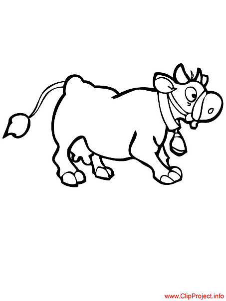 Calf image to color