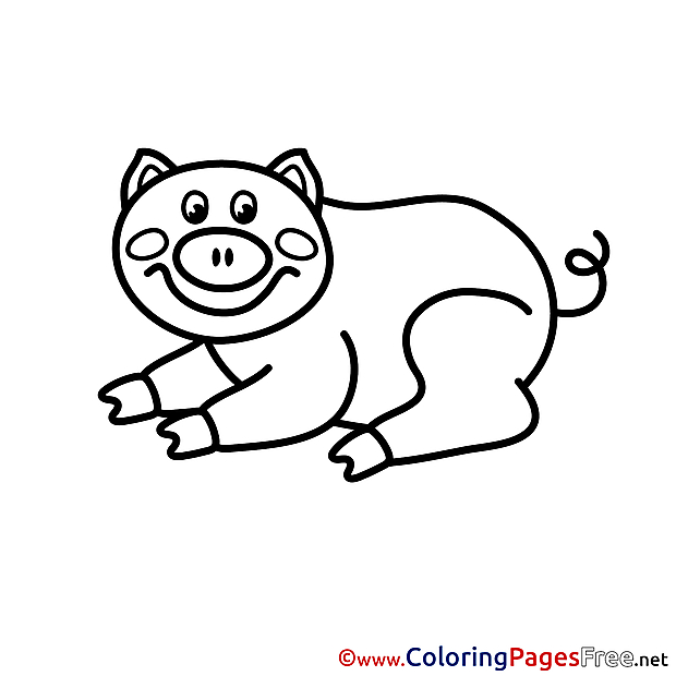 Children download Colouring Page Pig