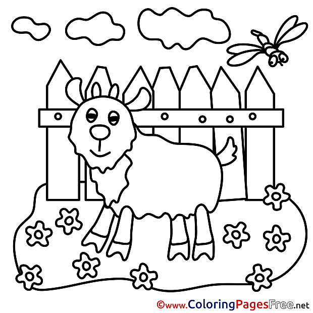 Colouring Sheet download free Goat