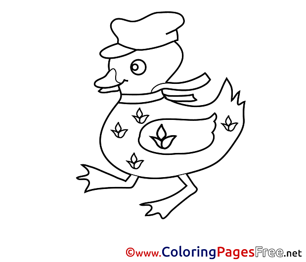 Duck Colouring Sheet download free