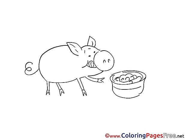 Pig Coloring Sheets download free