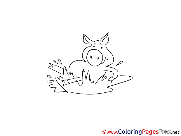 Pig in Mud Children Colouring Page