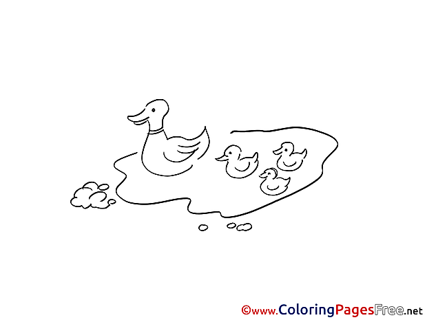 Puddle Canards Kids free Coloring Page