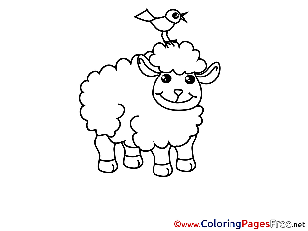 Sheep for Children free Coloring Pages