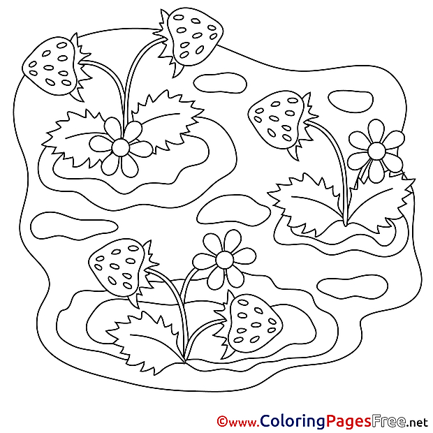 Strawberry printable Coloring Pages for free