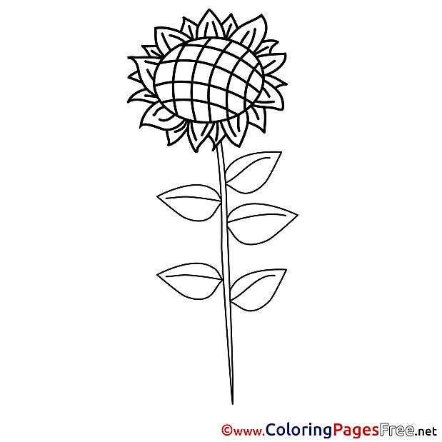 Sunflower Children Coloring Pages free