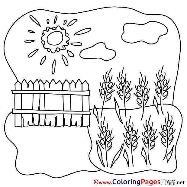 Wheat printable Coloring Sheets download