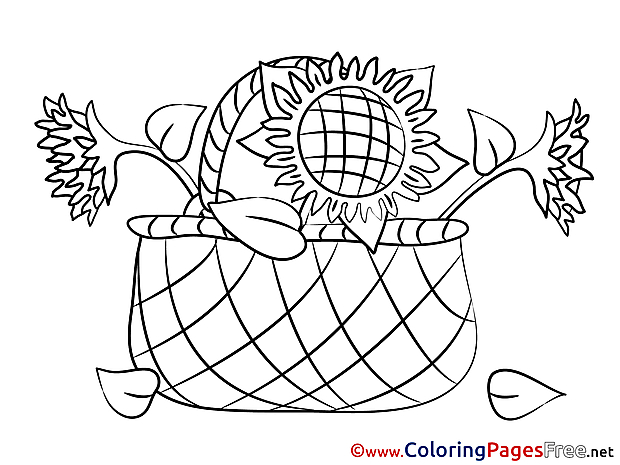 Basket free Colouring Page download