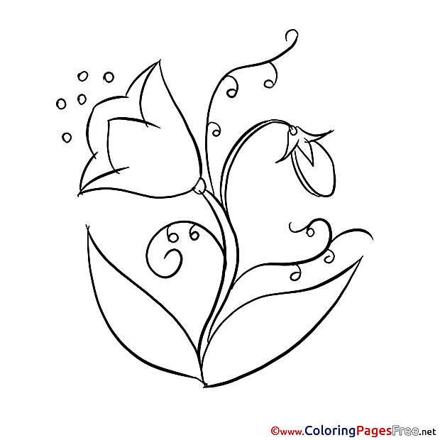 Bluebell download printable Coloring Pages