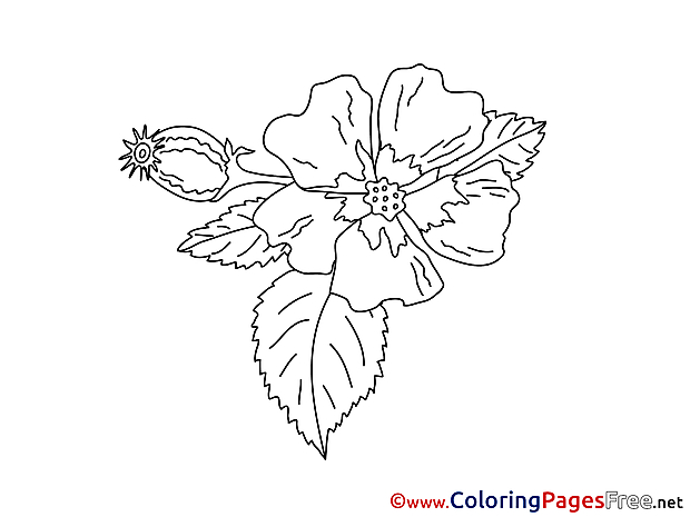 Bud Kids download Coloring Pages