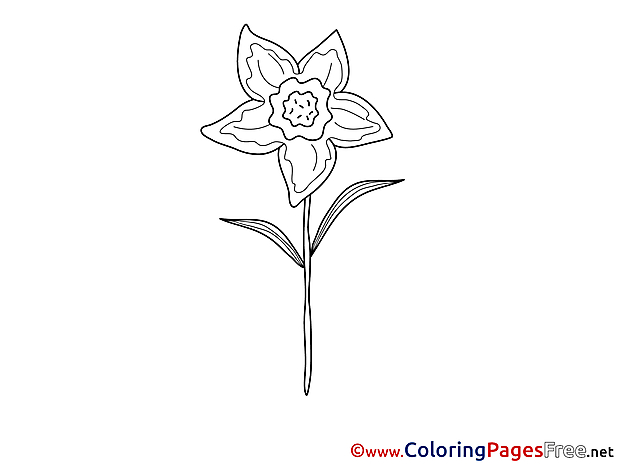 Colouring Sheet Flower download free