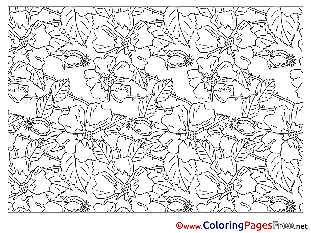 Decoration Flowers printable Coloring Pages for free