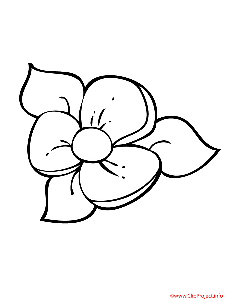 Flower sheet for coloring