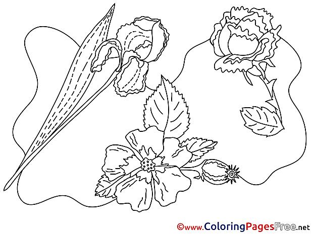 Flowering free printable Coloring Sheets