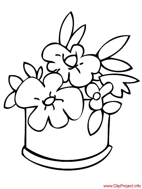 Flowers coloring free
