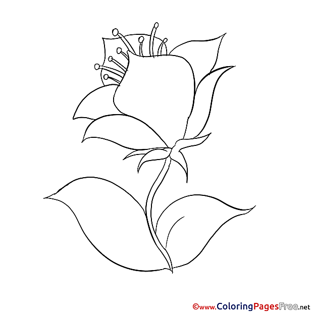 For Children Flower free Coloring Pages