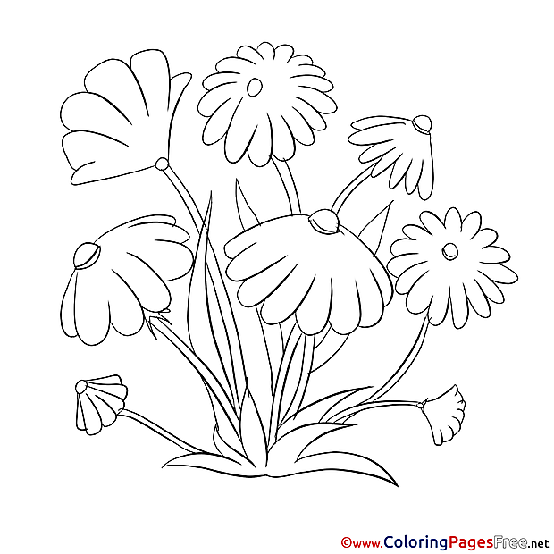 For free Flowers Coloring Pages download