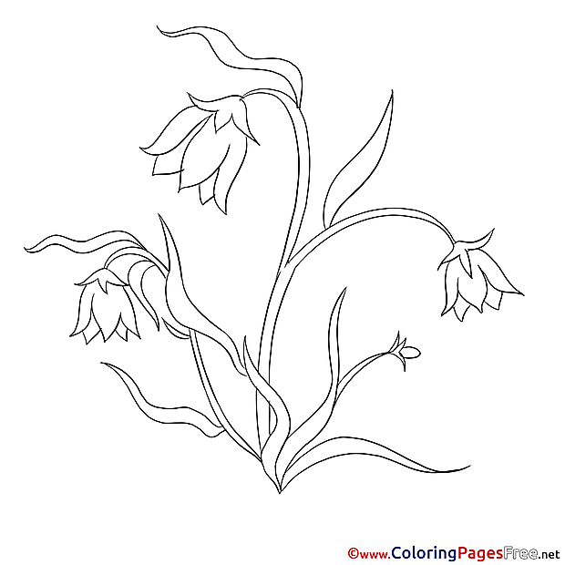 Image Flowers for Kids printable Colouring Page