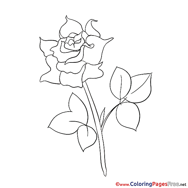 Painting Rose Kids download Coloring Pages