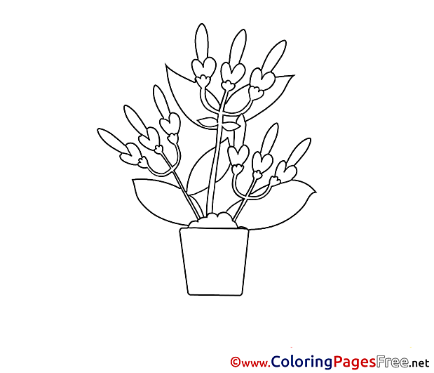 Pot download printable Coloring Pages