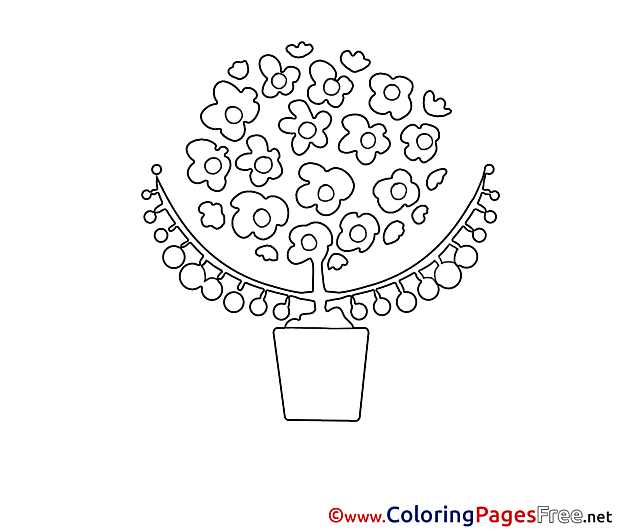 Pot for free Coloring Pages download