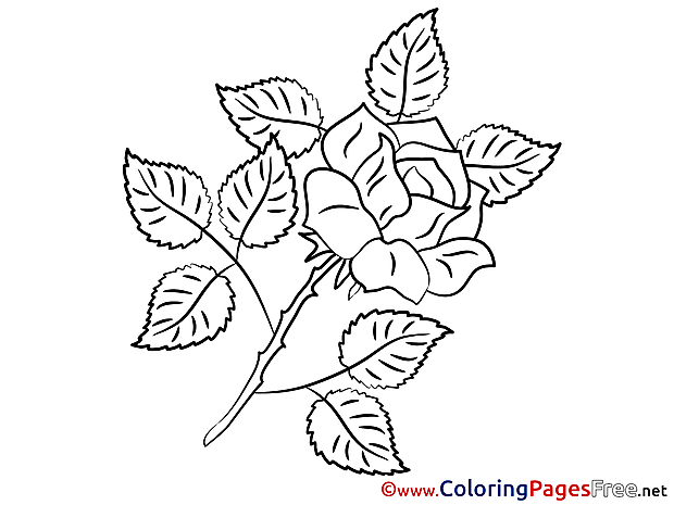 Rose Kids download Coloring Pages