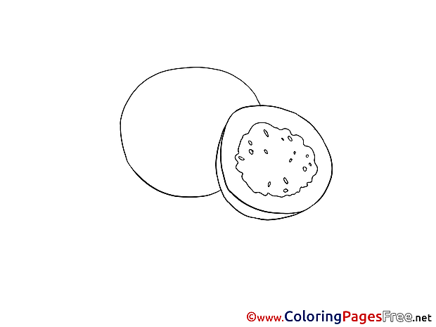 Kiwi for free Coloring Pages download