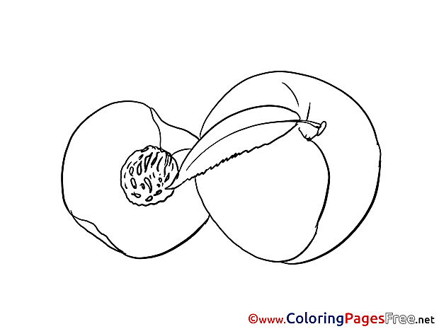 Peach Colouring Sheet download free