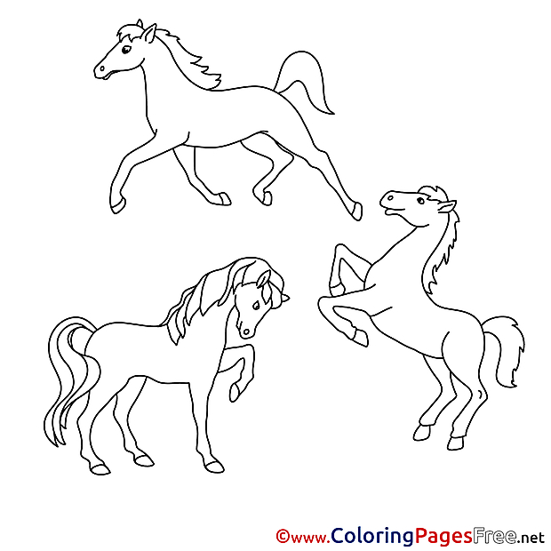 Kids download Coloring Horses Pages